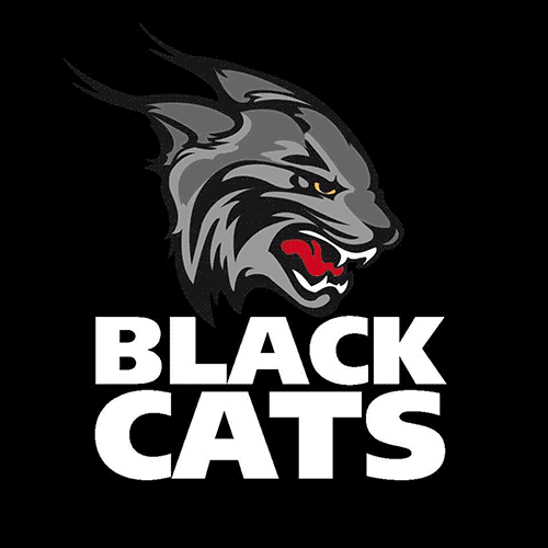 Royal Navy Black Cat Patch